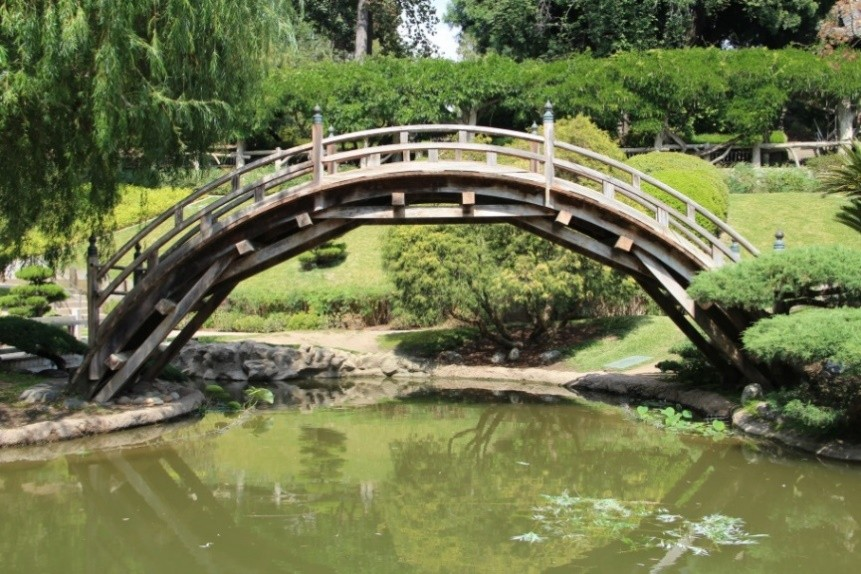 How did a woven arch drum bridge wind up in a Californian garden? A SUSTech researcher knows how!