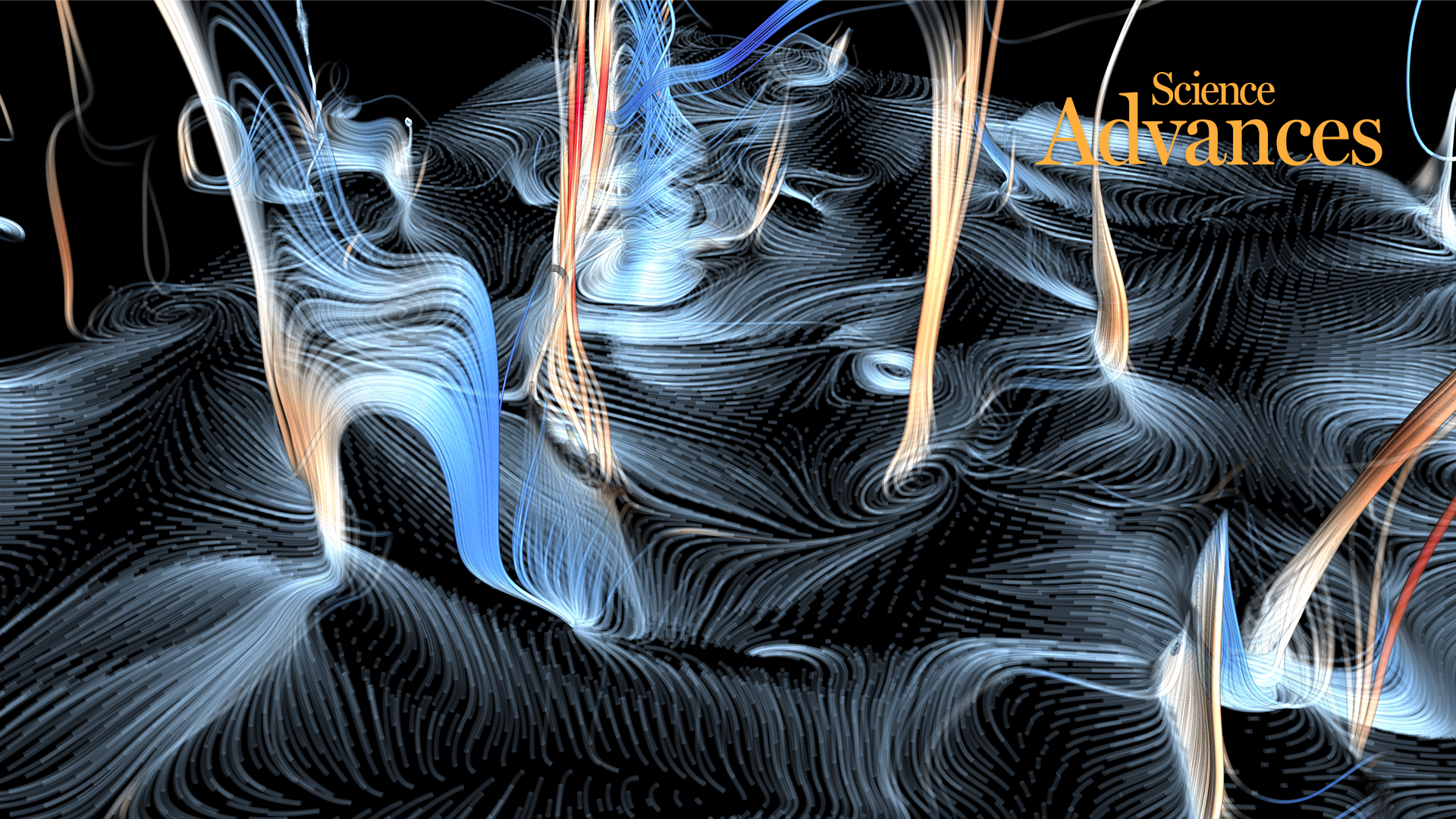 Pollen inspired rule behind motion of turbulent vortices