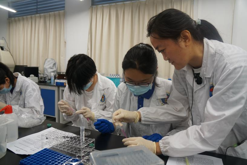 SUSTech welcomes students from HSAS for a day of scientific experiments