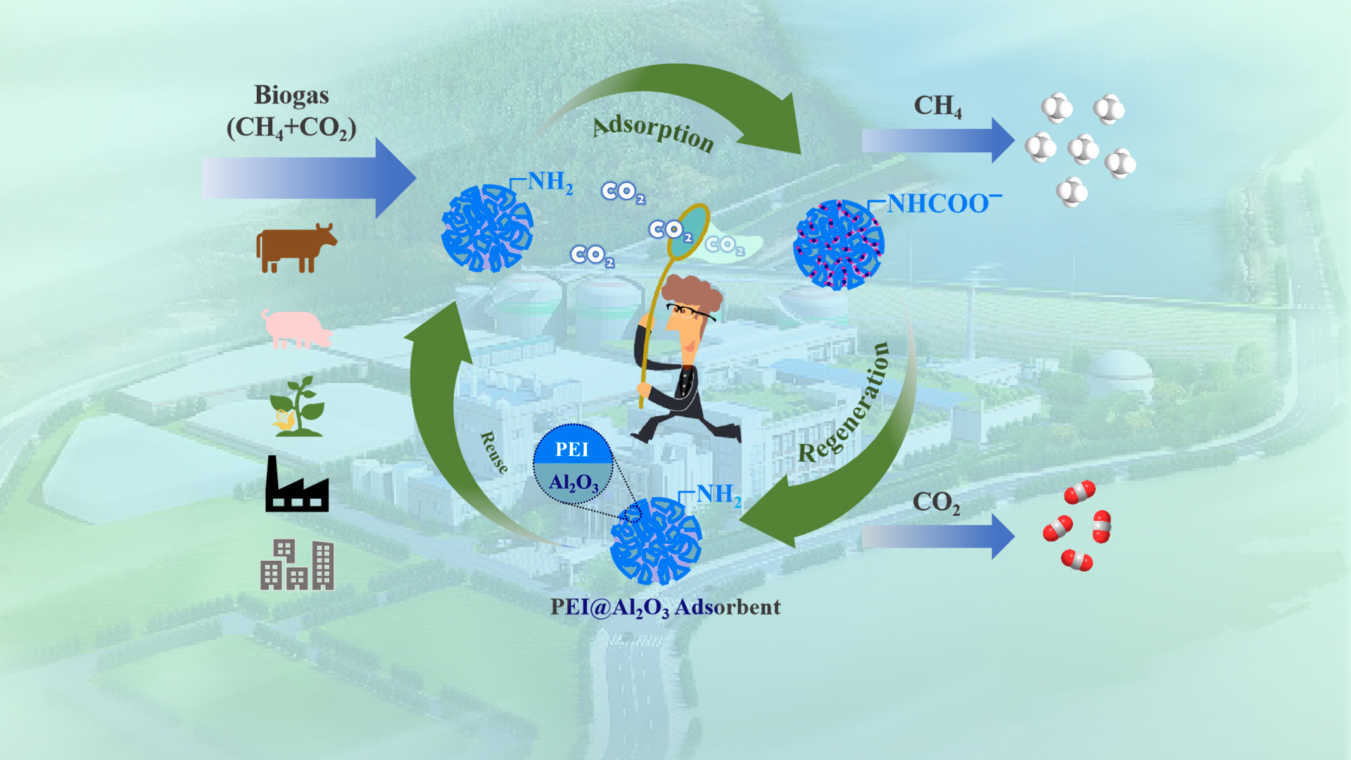SUSTech Zuotai Zhang's team makes advanced progress in solid amine CO2 capture materials