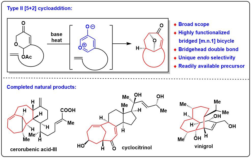 图1. Type II环加成反应的全合成应用.png